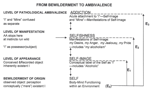 From Bewilderment to Ambivalence