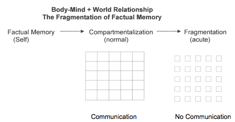 Body-Mind + World Relationship / Fragmentation